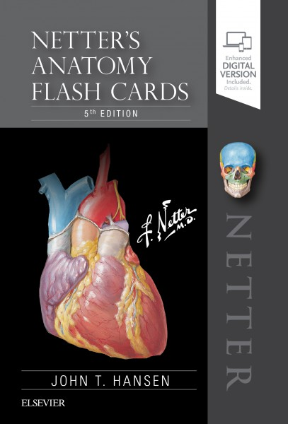 Netters Anatomy Flash Cards