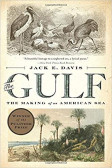 The Gulf The Making of An American Sea