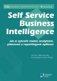 Self Service Business Inteligence